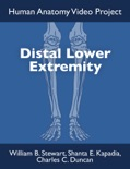 Distal Lower Extremity book summary, reviews and download