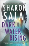 Dark Water Rising book summary, reviews and downlod