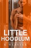 Little Hoodlum book summary, reviews and downlod