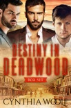 Destiny in Deadwood: Boxed Set book summary, reviews and downlod
