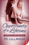 Opportunity of a Lifetime book summary, reviews and download