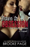Drawn to Obsession book summary, reviews and download