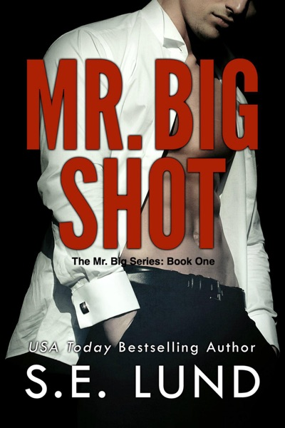 Mr. Big Shot by S. E. Lund Book Summary, Reviews and E-Book Download