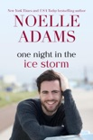 One Night in the Ice Storm book summary, reviews and downlod