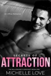 Secrets of Attraction: An Office Romance book summary, reviews and downlod