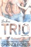 Christmas Trio - A MMF Short Story