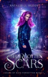 Forgotten Scars book summary, reviews and download