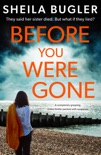 Before You Were Gone book summary, reviews and download