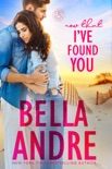 Now That I've Found You book summary, reviews and downlod