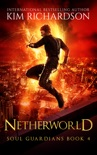 Netherworld book summary, reviews and downlod