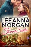 Forever Santa book summary, reviews and downlod