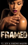 Framed book summary, reviews and download