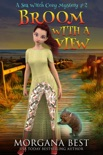 Broom with a View book summary, reviews and downlod