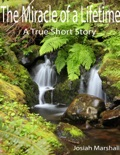 The Miracle of a Lifetime book summary, reviews and download