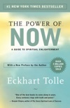 The Power of Now e-book
