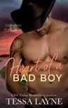 Heart of a Bad Boy book summary, reviews and download