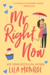 Mr Right Now book summary, reviews and downlod