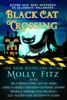 Black Cat Crossing: A Collection of 11 Cozy Mysteries to Celebrate Halloween book image