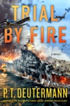 Trial by Fire book summary, reviews and download