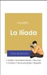 Guía de lectura La Ilíada (análisis literario de referencia y resumen completo) resumen del libro