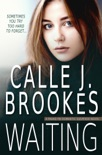 Waiting book summary, reviews and download