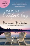 Meet Me in Barefoot Bay book summary, reviews and downlod