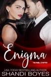 Enigma: The Final Chapter book summary, reviews and downlod