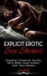 Explicit Erotic Sex Stories e-book