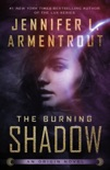 The Burning Shadow book summary, reviews and downlod