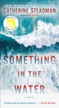 Something in the Water book summary, reviews and download