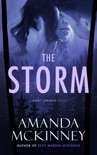 The Storm (A Berry Springs Novel) book summary, reviews and downlod