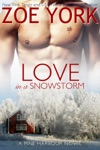 Love in a Snowstorm