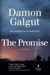 The Promise book summary, reviews and download