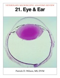 Eye & Ear book summary, reviews and download