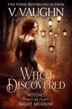 Witch Discovered book summary, reviews and downlod