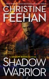 Shadow Warrior book summary, reviews and downlod