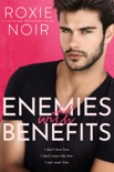 Enemies With Benefits book summary, reviews and download