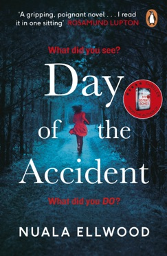 Day of the Accident E-Book Download