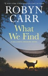 What We Find book summary, reviews and download