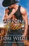 Arizona Heat e-book