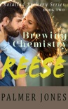 Reese book summary, reviews and downlod
