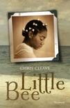 Little Bee book summary, reviews and downlod