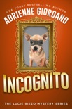 Incognito book summary, reviews and downlod