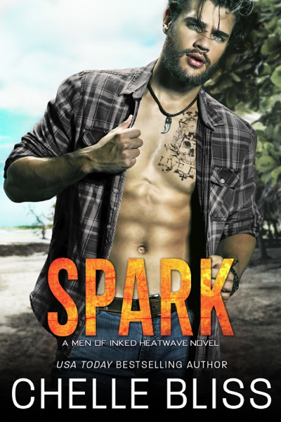 Spark by Chelle Bliss Book Summary, Reviews and E-Book Download