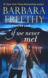 If We Never Met book summary, reviews and downlod