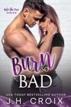 Burn So Bad book summary, reviews and downlod