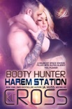 Booty Hunter book summary, reviews and download