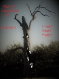 5 Short Spooky, Stories. book summary, reviews and download