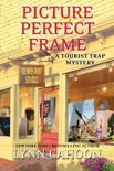 Picture Perfect Frame book summary, reviews and download