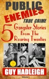Public Enemies: 5 True Crime Gangster Stories from the Roaring Twenties book summary, reviews and download